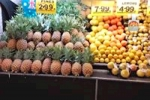 009 Wrights Bribie Fruit Shop for sale Call or SMS 0412 179 306