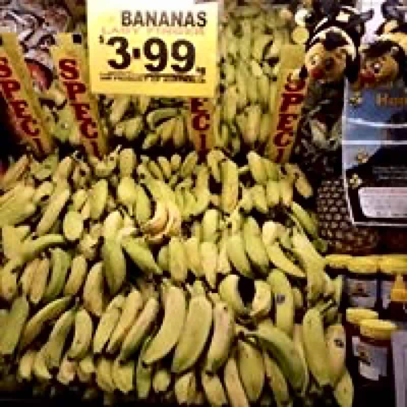 022 Wrights Bribie Fruit Shop for sale Call or SMS 0412 179 306