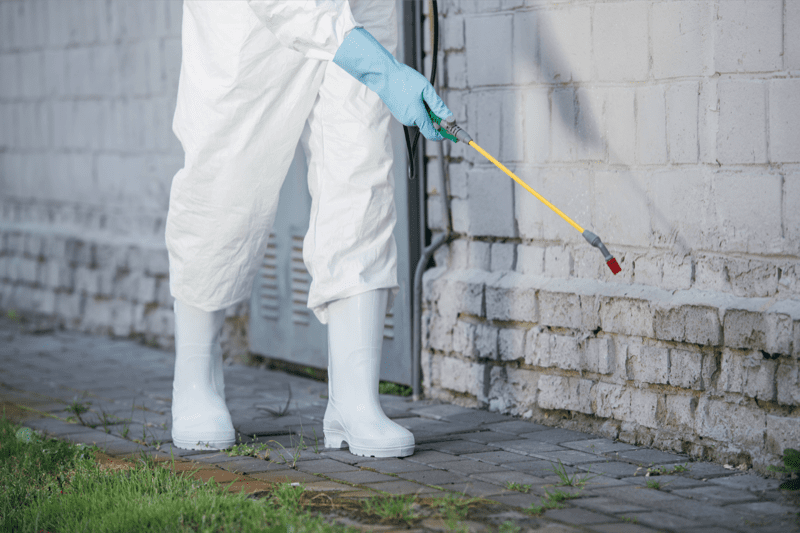 Pest control DP 008